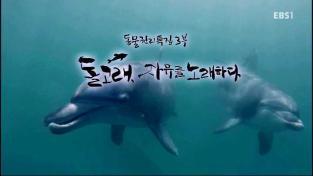 하나뿐인 지구, 동물 권리 특집 3부 - 돌고래 자유를 노래하다