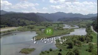 다큐프라임, 한국의 강 - 3부 강, 생명을 품다.