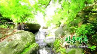 한국기행, 산촌별곡 3부 꿈꾸는 산골쟁이