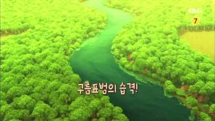 정글에서 살아남기-마루의 어드벤처