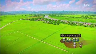 세계테마기행, 신짜오! 매혹의 베트남 3부 풍요의 물길, 홍 강