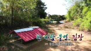 한국기행, 찬바람 불면, 김장 2부 동산 위에 저 생강굴