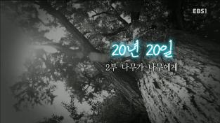 지식채널e, 20년 20일 2부 나무가 나무에게