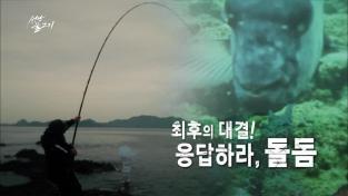 성난 물고기, 최후의 대결! 응답하라, 돌돔