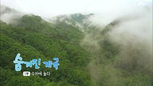 한국기행, 숨겨진 계곡 1부 수하에 놀다