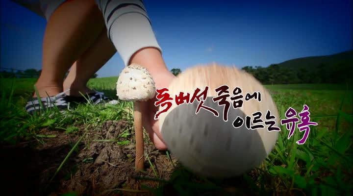 다큐프라임, 독버섯 죽음에 이르는 유혹