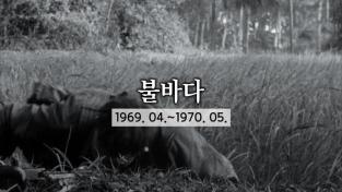 세계의 눈, 베트남 전쟁-불바다 (1969. 04.~1970. 05.)