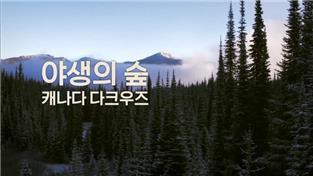 글로벌 자연다큐
