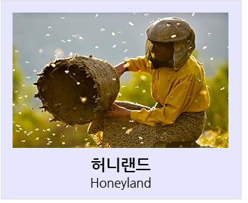 허니랜드 Honeyland