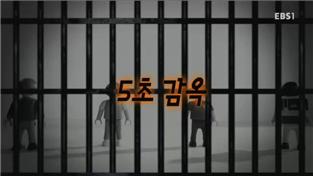 지식채널e, 5초 감옥