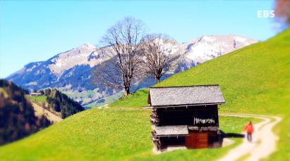 봄의 왈츠, 오스트리아