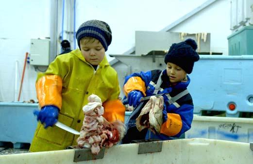 텅 커터스: 어린이 극한 직업
