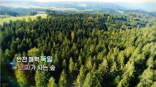 반전매력 독일 3부 괴짜가 사는 숲