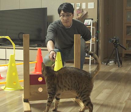 고양이를 부탁해 , 시루야 시루야 왜 우니?
