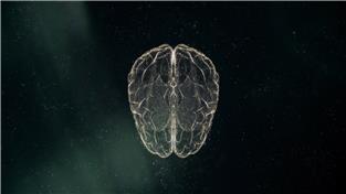 다큐프라임, 뇌로 보는 인간 - 1 부. 돈