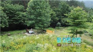 한국기행, 물 오른 여름 4부 오지의 여름 기억법