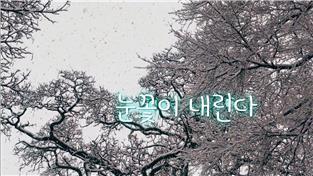 지식채널e, 눈꽃이 내린다