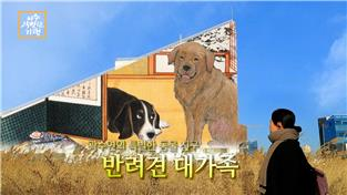 곽수연의 특별한 동물 친구-반려견 대가족