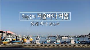 김승진의 겨울바다 여행 - 동해 바다 속으로
