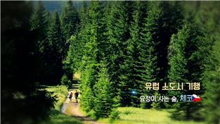 유럽 소도시 기행-요정이 사는 숲, 체코