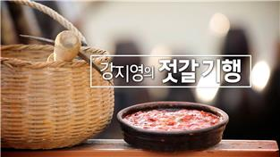 강지영의 젓갈 기행