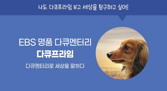 다큐프라임_3월