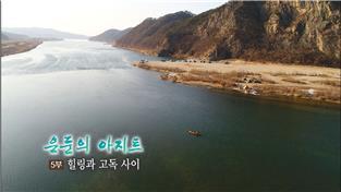은둔의 아지트 5부 힐링과 고독 사이