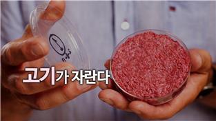 지식채널e, 고기가 자란다