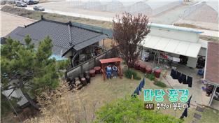 한국기행, 마당 풍경 4부 추억이 꽃핀다