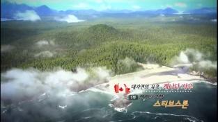 대자연의 유혹, 캐나다 서부 1부 연어의 고향, 스티브 스톤