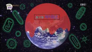 한 컷의 과학, 11회 - 바이러스