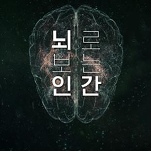 뇌로 보는 인간