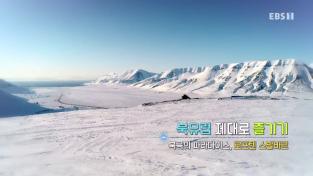 북유럽 제대로 즐기기-북극의 파라다이스, 로포텐 스발바르